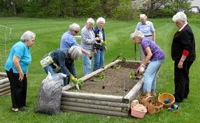 group_garden_project