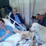 08/22/14 – A visit from J.J. the therapy dog
